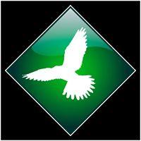 Kestrel Specialist Handrail Systems Logo