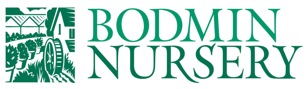 Bodmin Nursery Logo