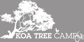 Koa Tree Camp Logo